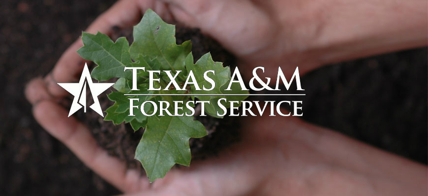 Red 5 standing by… and Texas A&M Forest Service